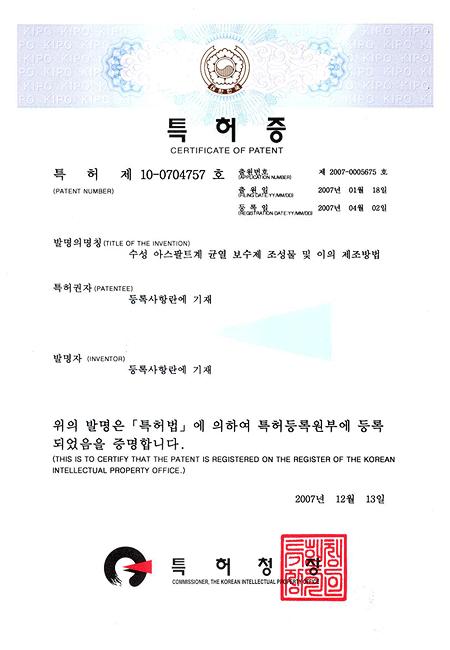 특허(10-0704757)